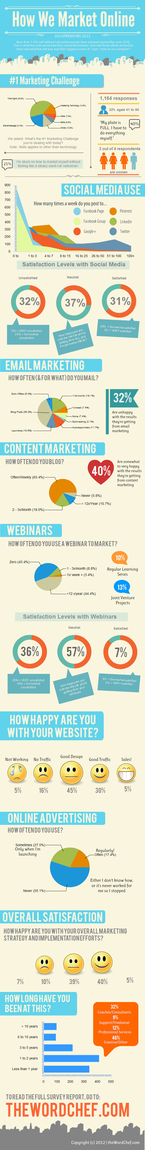 Solopreneurs-Online-Marketing-Survey-Infographic