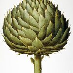 Your Business is Like an Artichoke