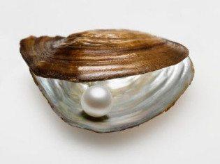 discomfort-creates-pearls